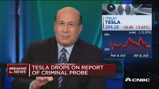 Terranova: Only way for Tesla to resolve issues is to control Elon Musk