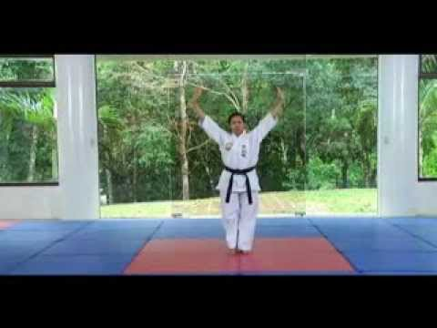 Tongil Moo Do Forms 1 - 9  Instructional Video Part 1
