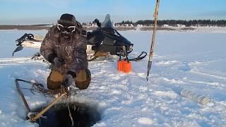 Отчёт с рыбалки 07.11.2017