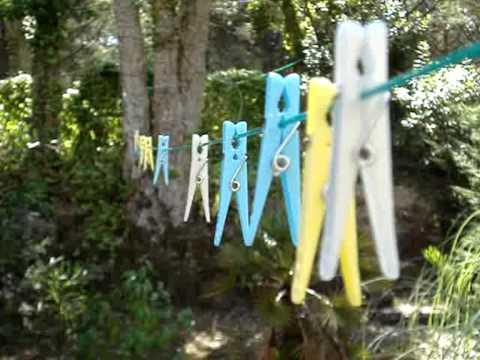 A Psi se Smáli - Jarní les na Podzim