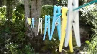 Video Jarní les na Podzim