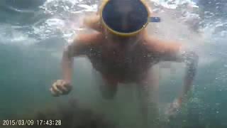 Отдых и Дайвинг На Черном Море 2017 Джубга Кемпинг Лермонтово Diving Black Sea