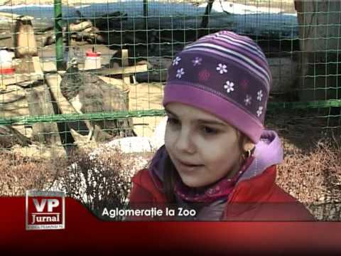 Aglomeraţie la Zoo