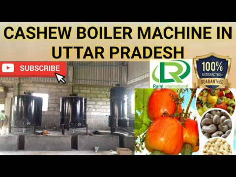 Automatic Cashew Boiler With Cooker