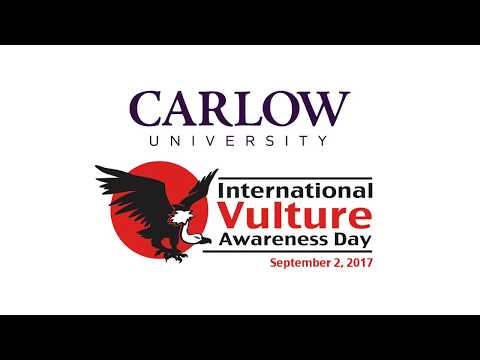 Carlow University Observes International Vulture Awareness Day