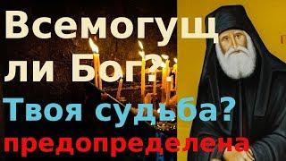 О предопределении. Какая судьба нам уготована??  Мир Православия