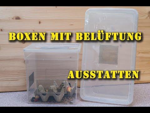 Terrariumpraxis-Tutorial: Kunststoffboxen mit Belüftung ausstatten