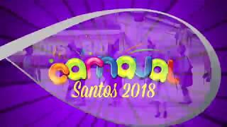 Veja como foi a 1ª noite dos Desfiles das Escolas de Samba de Santos