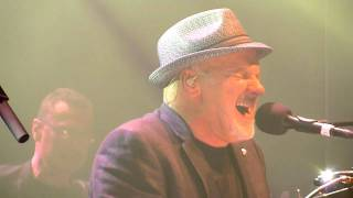 Paul Carrack - Dedicated