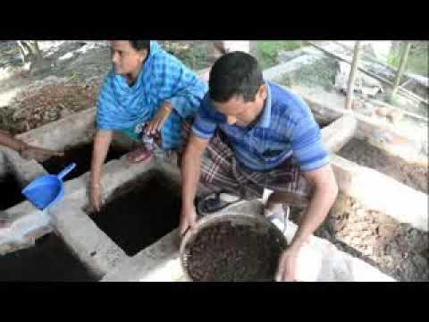 ভার্মি কম্পোষ্ট উৎপাদন পদ্ধতি