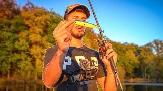 Helpful Tips For Fall Bass Fishing!