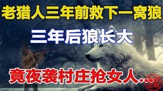 老猎人三年前救下一窝狼,三年后狼长大,竟夜袭村庄抢女人...