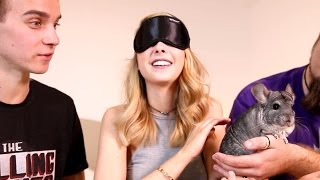 Download Youtube: THE SUGG SIBLINGS MEET THE CUTEST ANIMAL