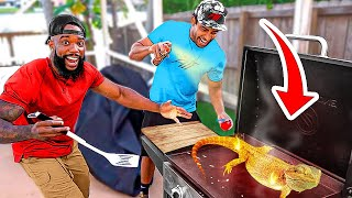 Catch & Cook Grilled Iguana In Florida!