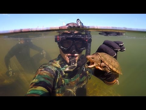 Found Knife, Razor Blade and $50 Swimbait Underwater in River! (Freediving) | DALLMYD