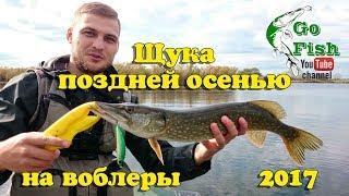 Рыбалка поздней осенью на кубани