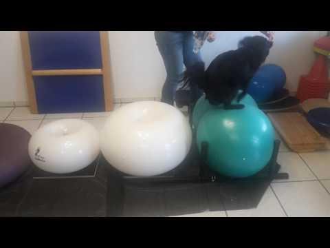 Behandlung von Spasmen der Nackenmuskulatur