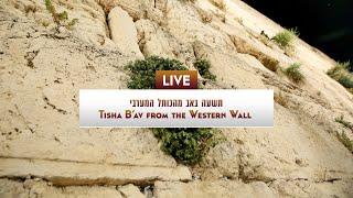 Video: Modlitby Tisha b'Av u Západní zdi