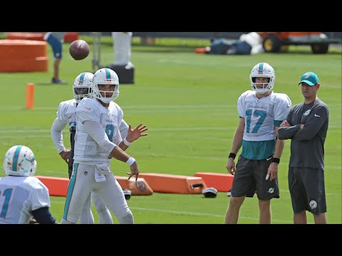 6ce80fcea Dolphins Coach Gase on Osweiler    I know what Brock brings to the table