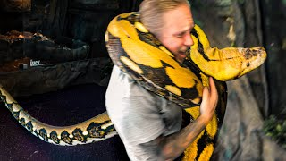 20 FOOT SNAKE SURPRISES ME!!   BRIAN BARCZYK