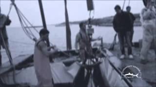 preview picture of video 'Tonnara Carloforte Maggio 2011'