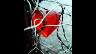 Eric Clapton - Tangled in love (lyrics on clip)