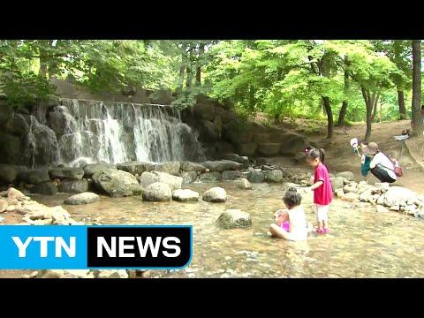 [날씨] 서울 올 최고 34℃...주말에도 무더위 / YTN (Yes! Top News)