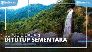 Curug Bidadari di Sentul Bogor Ditutup Sementara, Ini Penyebabnya