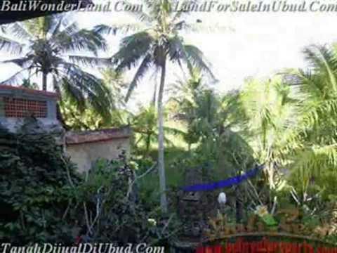 Bagus 430 m2 Lahan   dengan Galery di Sentral Ubud TJUB443