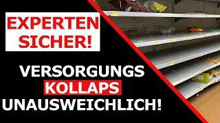 Experten sind sich SICHER - Versorgungskollaps wird Deutschland erreichen!Leere Regale werden kommen
