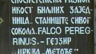 Metođe - Kopaonik (2.deo)