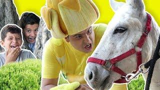تحميل اغاني فوزي موزي وتوتي - حمار للبيع - Donkey for sale MP3