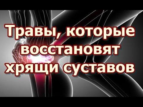 Евдокименко из его книжки артроз избавляемся от боли в суставах