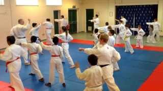 preview picture of video 'Kata training at Grays dojo'