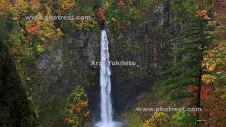 紅葉の白水の滝