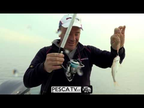 I vestiti sono nuovi per pesca in un giro in linea immagazzinano