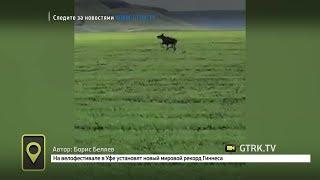 Мобильный репортёр - 26.05.17