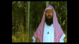 قصة سليمان والهدهد وبلقيس ملكة اليمن