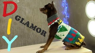 Glamorous Dog Clothes For 5 Min 🐶 DIY