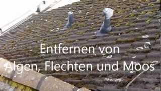 Dachbeschichtung In Karlsruhe HBV DACH