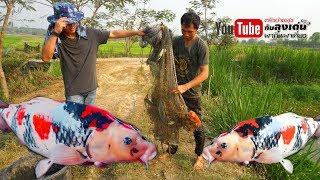 ทอดแห รอบเดียวได้ปลาคราฟ 5 ตัว บ่อตกปลาโยชิ
