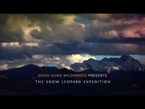 Snow Leopard Expedition - Ghost Of The Himalayans