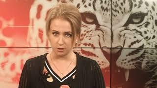 Несчастные случаи с экзотическими животными в России