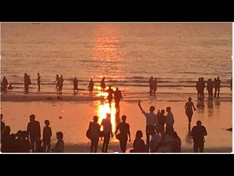 Relaxing Video with Picturesque Views of Sunset - [Nature Cool]