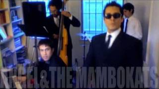 I Can't Cry Anymore - Angel And The Mambokats