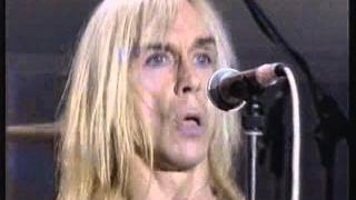 Iggy Pop Pussy Control, The Passenger, Lust For Life Live The White Room 24/02/96