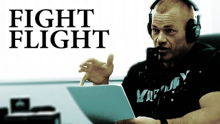 How to Control the Fight or Flight Response - Jocko Willink