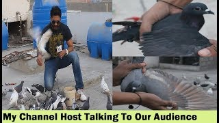 My Colorful Birds Channel Host Talking To Our Audience - In Urdu Hindi