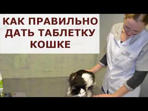 Гельминты операция по удалению видео