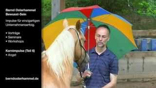 Führungskräfte Seminar Workshop: Pferdeflüstern für Manager (Teil 6) Redner Bernd Osterhammel